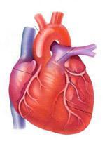 Reglarea ritmului cardiac
