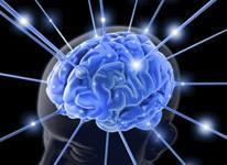 Suplimente alimentare pentru sistemul nervos